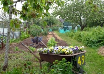 apply for a plot whipton lane allotments exeter